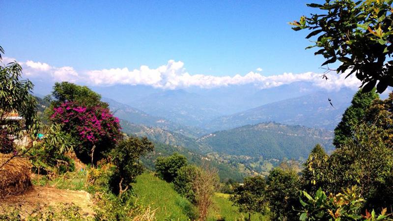 Nepal – Tibetanskt nyårsfirande i rhododendronblomningens tid